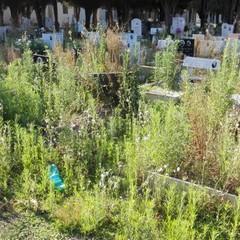 Degrado al Cimitero di Altamura