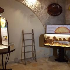 Museo del pane di Vito Forte