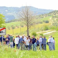 Campo Lenticchia JPG