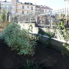 Un giardino dedicato a Nunzio Clemente