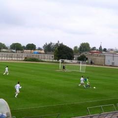 Fortis Murgia – Fortis Trani