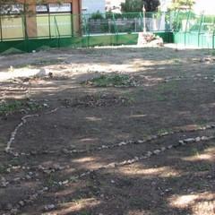 Un orto botanico nel cuore della citt