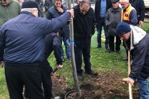 piantato albero in memoria di Vito Cristallo