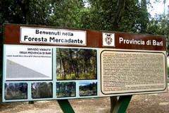 Foresta Mercadante, sequestrato immobile della Regione Puglia