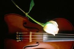 """""""La musica classica fa bene al cervello"""", un incontro di Algramà"""