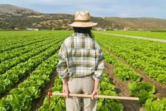 """""""AgriCultura"""", 3 milioni di euro alla Città Metropolitana di Bari"""