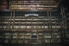 """Bando """"Community Library"""": l'IC """"S. G. Bosco-T. Fiore"""" presenta la proposta progettuale da candidare"""