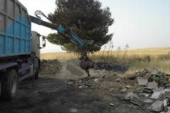 Raccolta dei rifiuti lungo le strade statali: intesa Regione - Anas