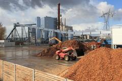 Impianto di Biomassa in città, parola al sindaco