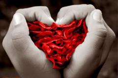 Donazione del sangue al Perinei: la Confconsumatori interpella il Comune