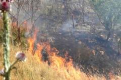 Incendio nei pressi della rotonda in viale Martiri