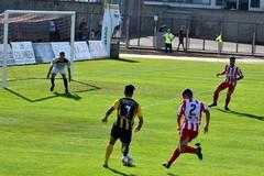 """Al """"Vicino"""" di Gravina la Team Altamura ko nel derby"""
