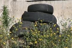 #Pfurecycle: i pneumatici usati diventano parchi eco-sostenibili