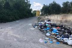 Rifiuti, riapre la piattaforma Ccr in via Gravina