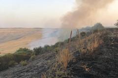 Incendi: Coldiretti Puglia, c'è mano piromani in 6 roghi su 10