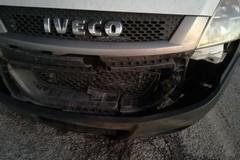 Branco di cinghiali sulla strada Altamura-Corato, nuovo incidente