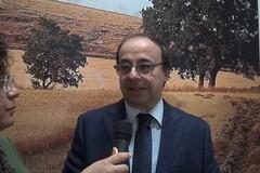 Presentazione ufficiale dell'associazione AlGraMà