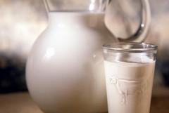 Latte, rinnovato in Puglia l'accordo tra produttori e trasformatori