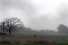 Allerta meteo arancione della Protezione civile per vento