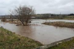 Variazioni climatiche, Pac anticipata per gli agricoltori pugliesi