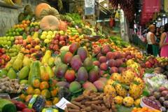 Zucchine a 3,50 euro al chilo, prezzi triplicati dal campo alla tavola