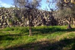 Un tratto di fogna bianca per proteggere le Mura megalitiche