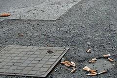 Emanata l'ordinanza per la tutela dell'igiene pubblica e del decoro urbano