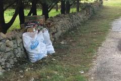 Rifiuti nel Parco rimossi da operai di Arif-Puglia
