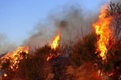 Attività antincendio e sorveglianza territorio, proroga per eccessivo caldo
