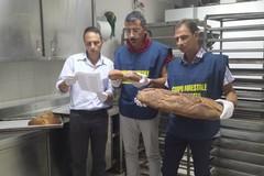 Falso pane di Altamura commercializzato in una catena di supermercati
