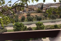 Parco degli ulivi, i cittadini chiedono risposte chiare