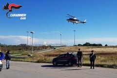 Operazione antidroga dei carabinieri nella Murgia