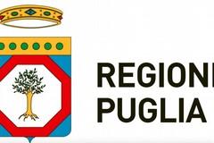 Elezioni in Puglia, Movimento 5 stelle sceglie on line
