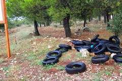 """5 Stelle: """"Necessario un tavolo tecnico su gestione rifiuti"""""""