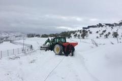 Dichiarato lo stato di calamità per l'agricoltura pugliese