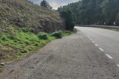 Strada Altamura Corato, ripulite le piazzole