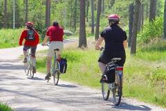 """Progetto """"Bike Sharing e fonti rinnovabili"""""""