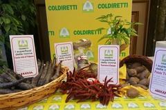 Ecco i Super Food di Puglia