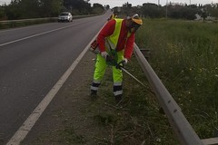 Pericolo incendi e sicurezza, taglio dell'erba su strade provinciali
