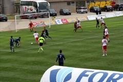 Team Altamura, sconfitta in casa dal Francavilla