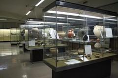 GEP 2017: il Museo Nazionale Archeologico intasca numerose presenze