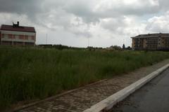 L'area verde di via Cassano sepolta dalle erbacce