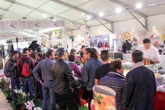 U-Tub in Tour a Lecce per Agrogepaciok