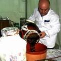 ExpoMurgia 2010, il programma dettagliato di tutti gli eventi