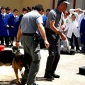 """Blitz antidroga "" presso la scuola S. Francesco d'Assisi"
