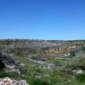 Siti Unesco, il Parco dell'Alta Murgia scrive al ministro Bonisoli
