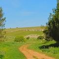 Vivere il Parco dell'Alta Murgia: le passeggiate agroecologiche