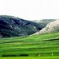 Piano e regolamento del Parco dell'Alta Murgia
