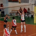 Clemente Dibenedetto Leonessa Volley, week-end a corrente alternata