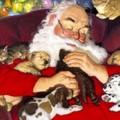 Associazione Fidas e Babbo Natale